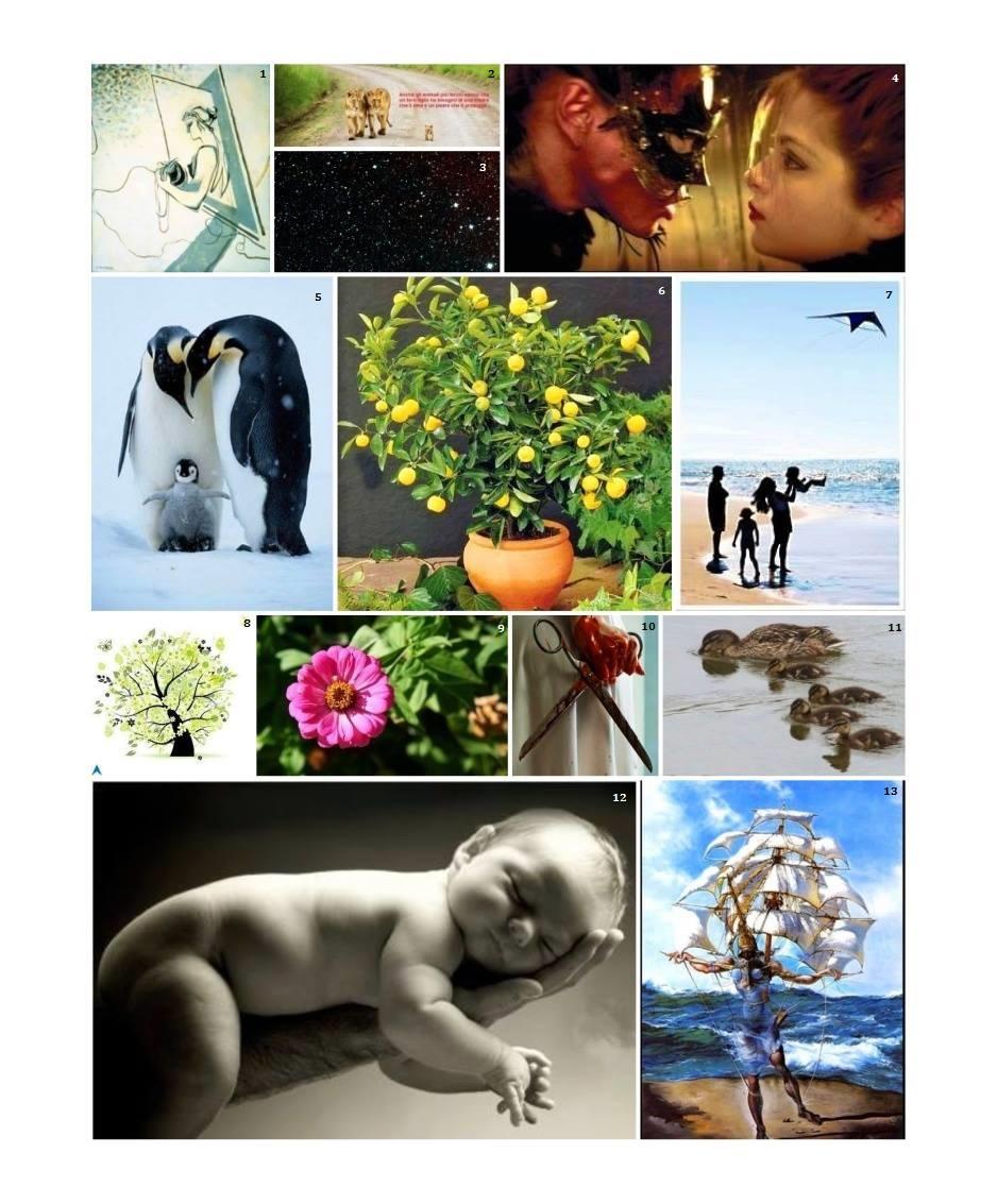 collage genitori